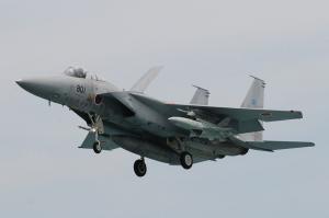 F-15J #801